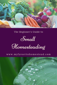 The Beginner's Guide to Small Homesteading