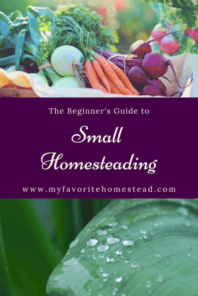 vegetable plants for homesteading