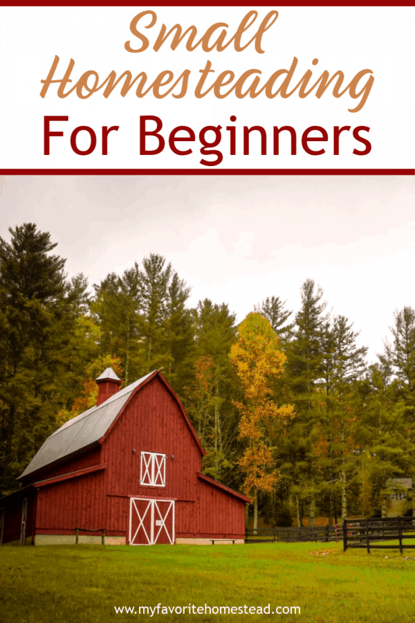 Small Homesteading for Beginners