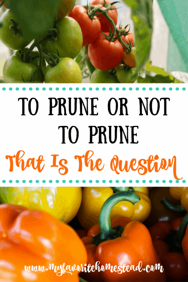 To Prune or Not to Prune That is the Question