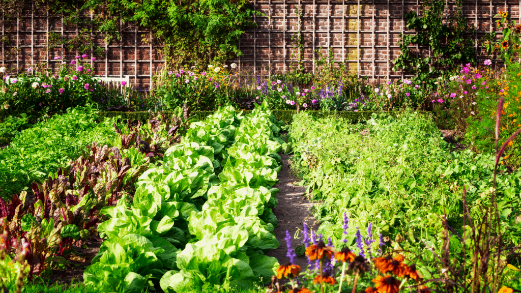 Wondering why you need to weed your vegetable garden? Check out this blog post to learn the benefits of weeding your garden.
