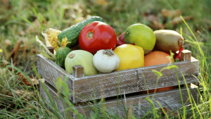 Ready to grow food in the right season, so those vegetables don't taste bland? In this article, we explain how planting vegetables by season and vegetable garden planning can produce tasty vegetables, perfect for beginning gardeners and homesteaders. Tap to read more from My Favorite Homestead | Gardening and Homesteading Tips