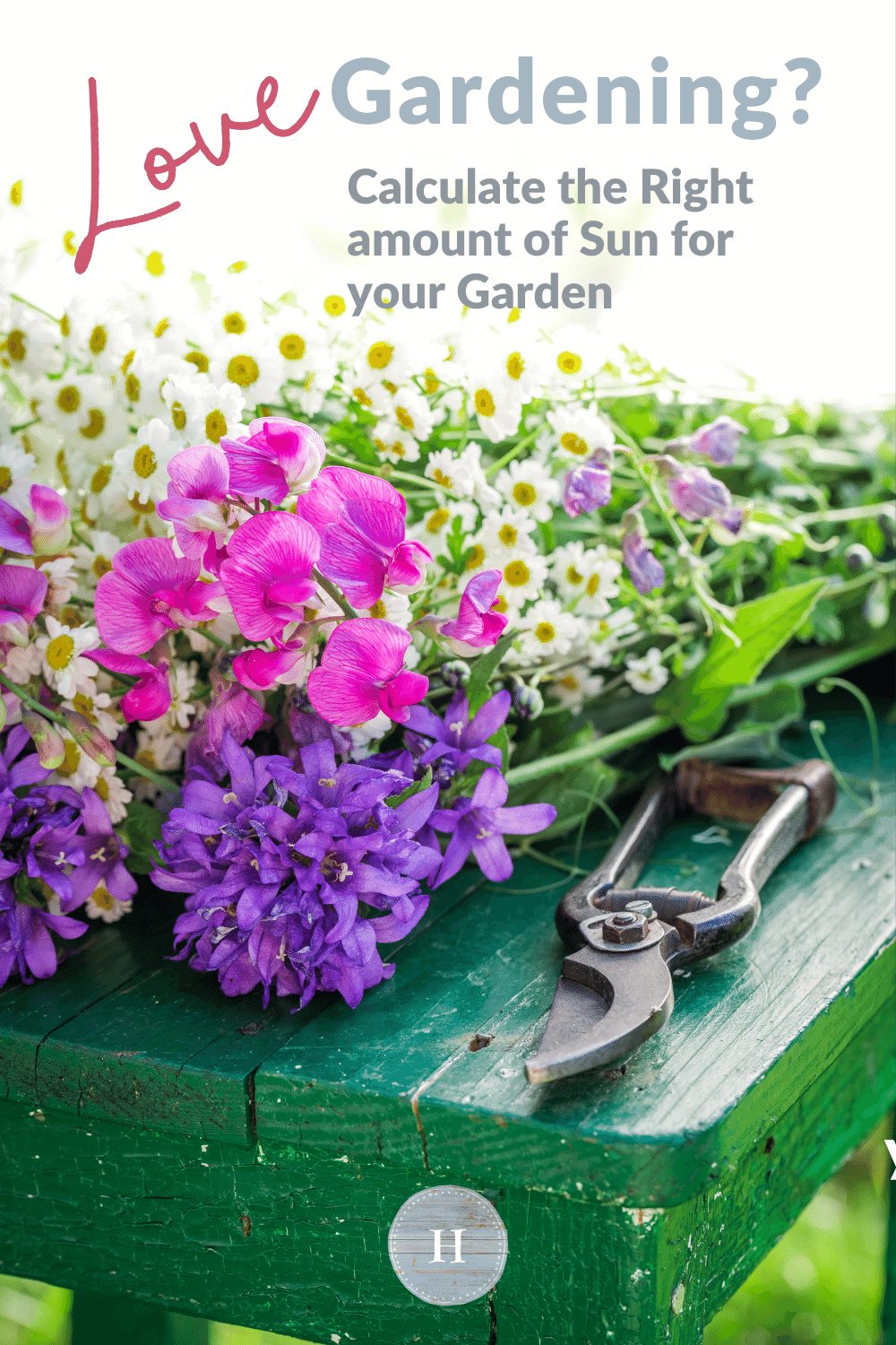 Love gardening but not sure how to tell if your garden will get the right amount of sun? Check out this blog post for some gardening tips to ensure your backyard vegetable garden has the right amount of sunlight.