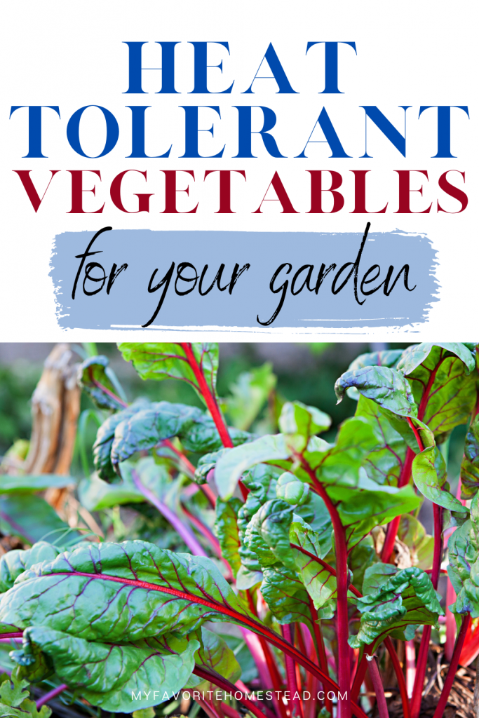Looking for heat resistant vegetables to grow in summer, without having the plants die? In this article, we explain 9 heat tolerant plants to grow and that tolerate the blazing heat, perfect for beginner gardeners and homesteaders. Tap to read more from My Favorite Homestead | Gardening and Homesteading Tips